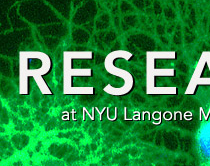 NYU Langone Medical Center Office of Science and Research